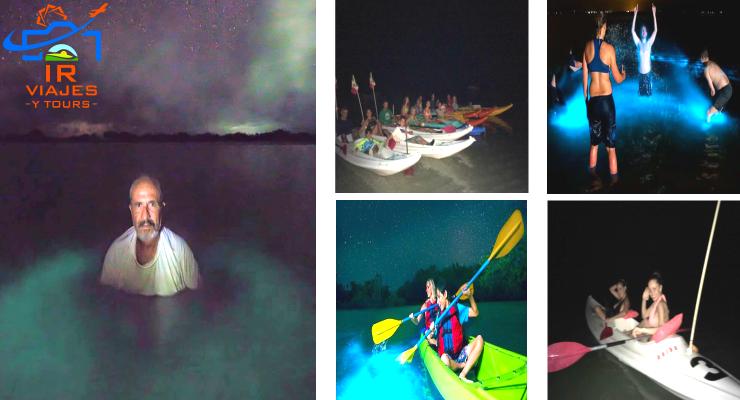 Bioluminiscencia en HolBox Tour y Fechas de Temporada