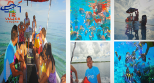 Tour Snorkel Arrecifes Cozumel con Fondo de Cristal