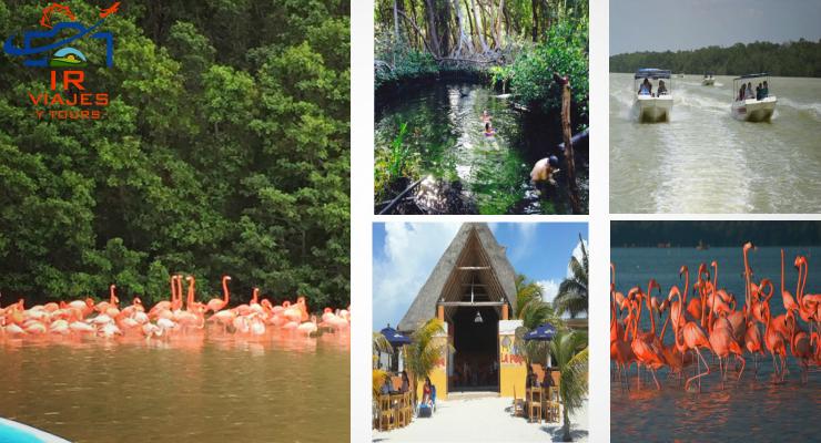 Tour a Celestun con Transporte Desde Mérida Yucatán