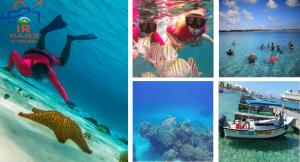 Tour de Snorkel el Cielo Cozumel desde Cancún