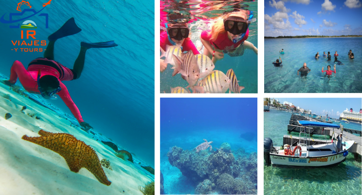 Tour de Snorkel el Cielo Cozumel desde Cancun